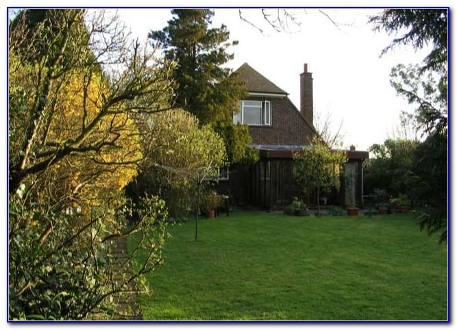 Suburban Lawn And Garden Roe
