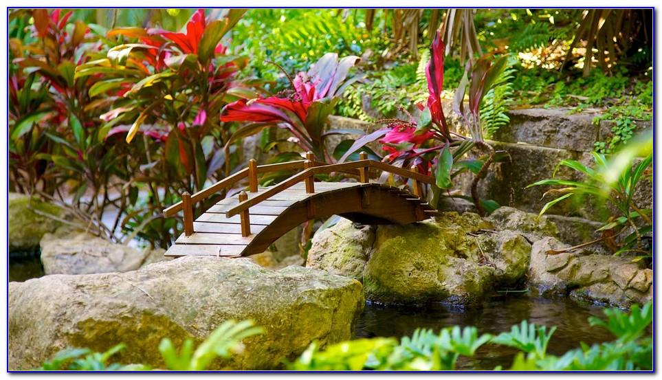 Sunken Gardens St Pete Wedding Photos