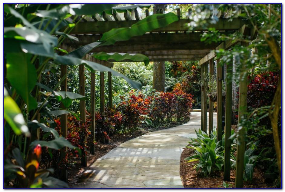 Sunken Gardens St Petersburg Florida Coupons