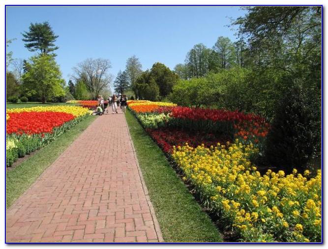 Amc Garden State 16 Paramus New Jersey
