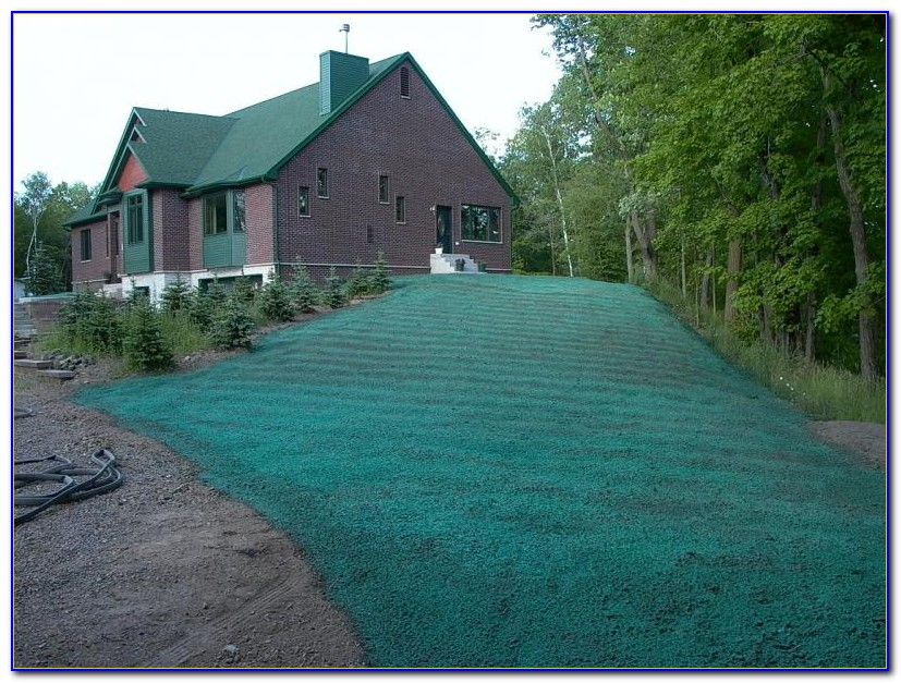 Bluegrass Lawn And Garden Louisville