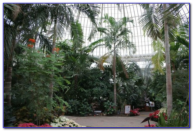 Botanical Gardens Buffalo Ny Admission