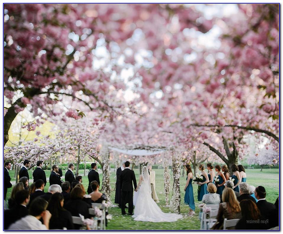 Brooklyn Botanical Garden Wedding Photography