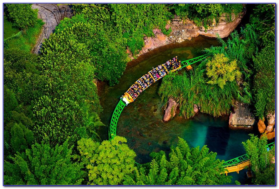 Busch Gardens Tampa Fl Number