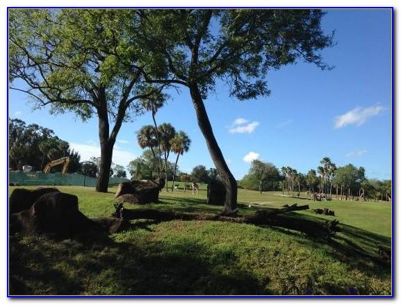 Busch Gardens Tampa Map 2013