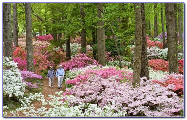 Callaway Gardens Pine Mountain Ga Phone Number