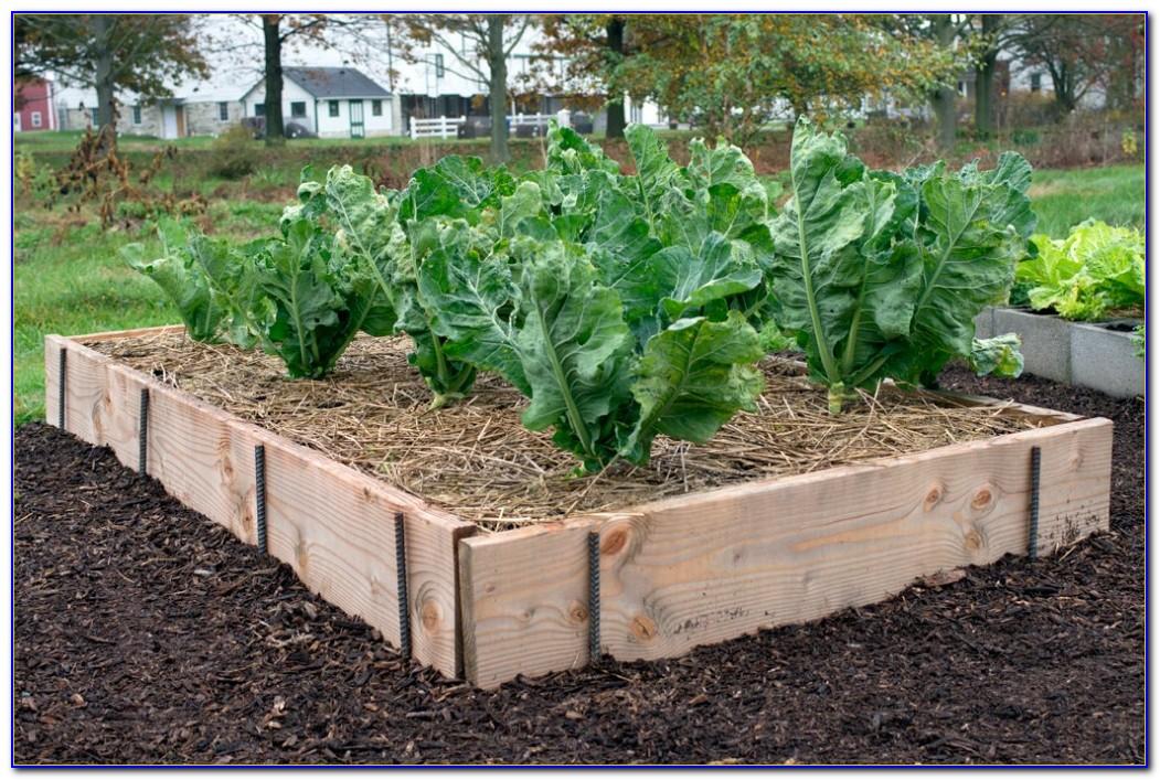 Cedar Raised Garden Beds Kits