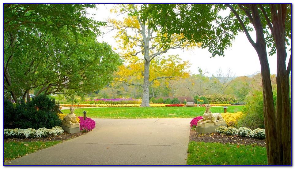 Cheekwood Botanical Garden And Museum Of Art Light Show