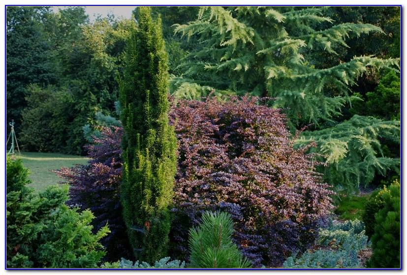 China Garden Newark De
