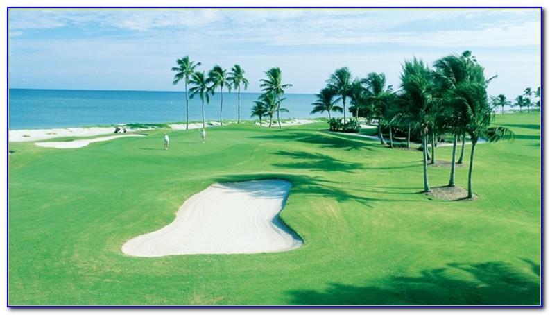 Hilton Garden Inn Fort Myers Florida Airport