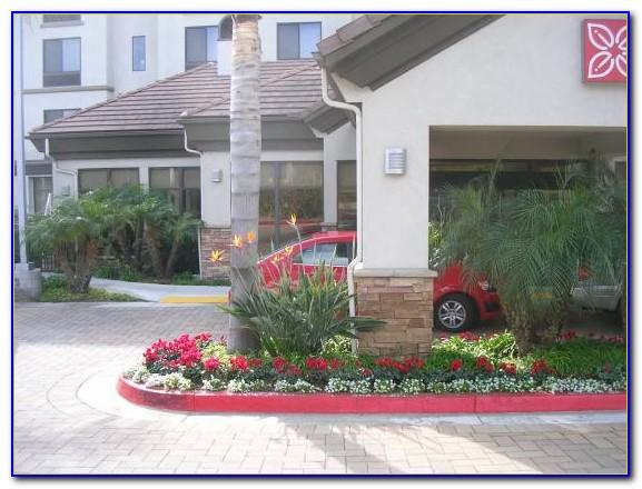 Hilton Garden Inn San Antonio Live Oak