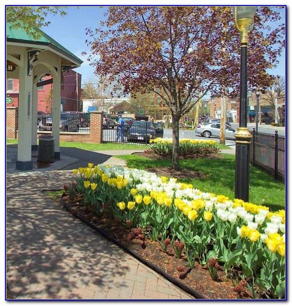 Hilton Garden Inn Troy Ny Easter Brunch