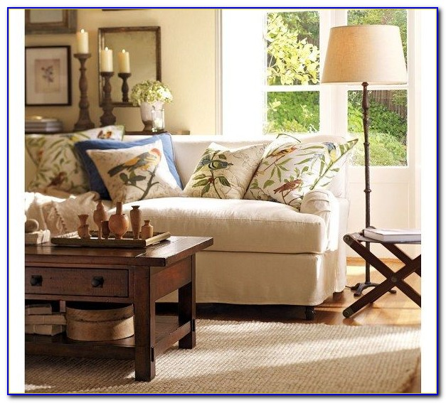 Pottery Barn Living Room Rugs