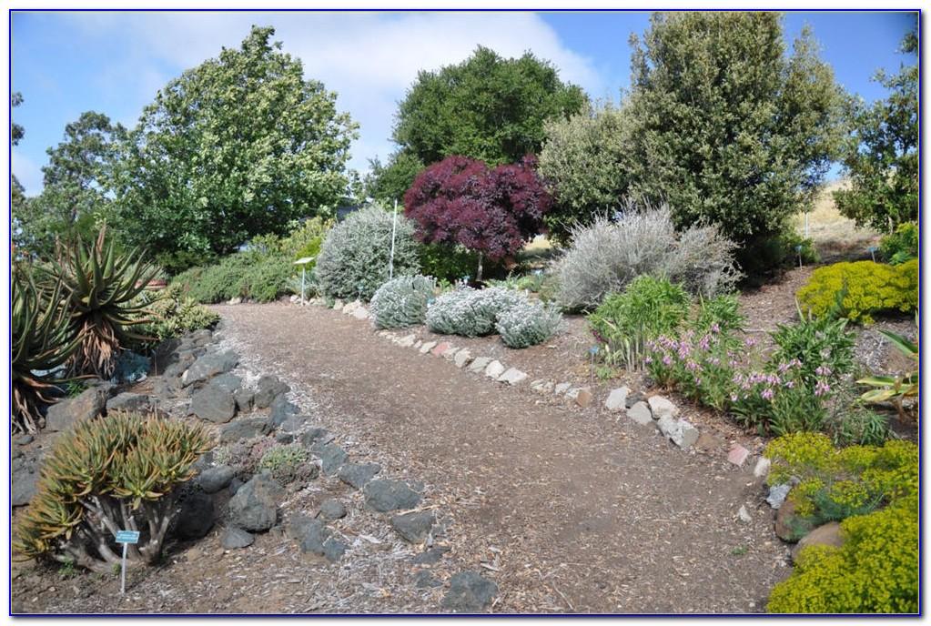 San Luis Obispo Botanical Garden Hours