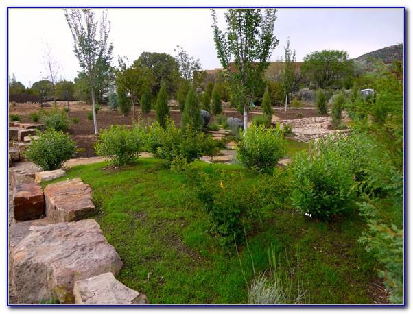 Santa Fe Botanical Gardens Tour