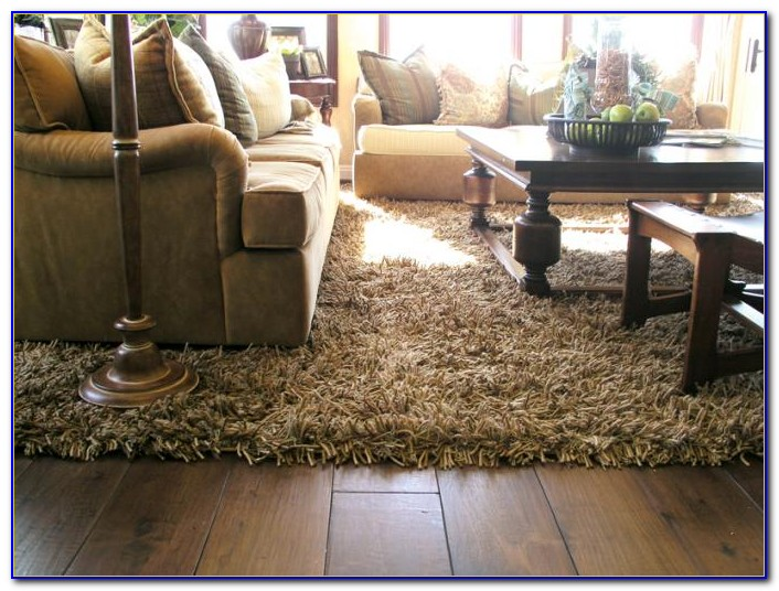 Shaggy Rugs For Living Room