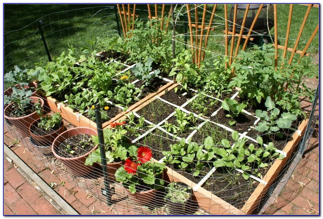 Square Foot Gardening Spacing Okra