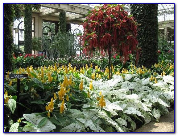 The Gardens Hotel Key West Fl United States
