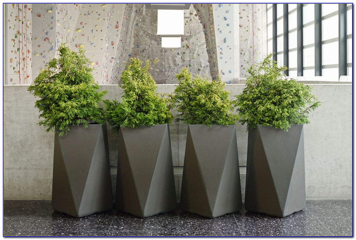Large Patio Planters For Trees