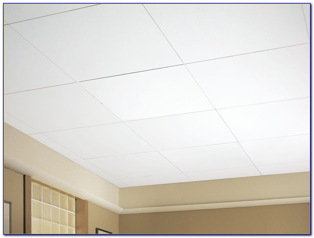 Armstrong Acoustical Ceiling Tile 1774
