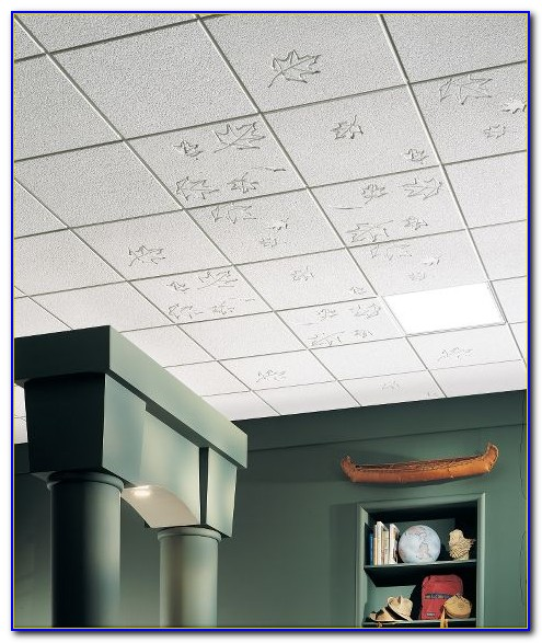 Armstrong Commercial Ceiling Tile Installation