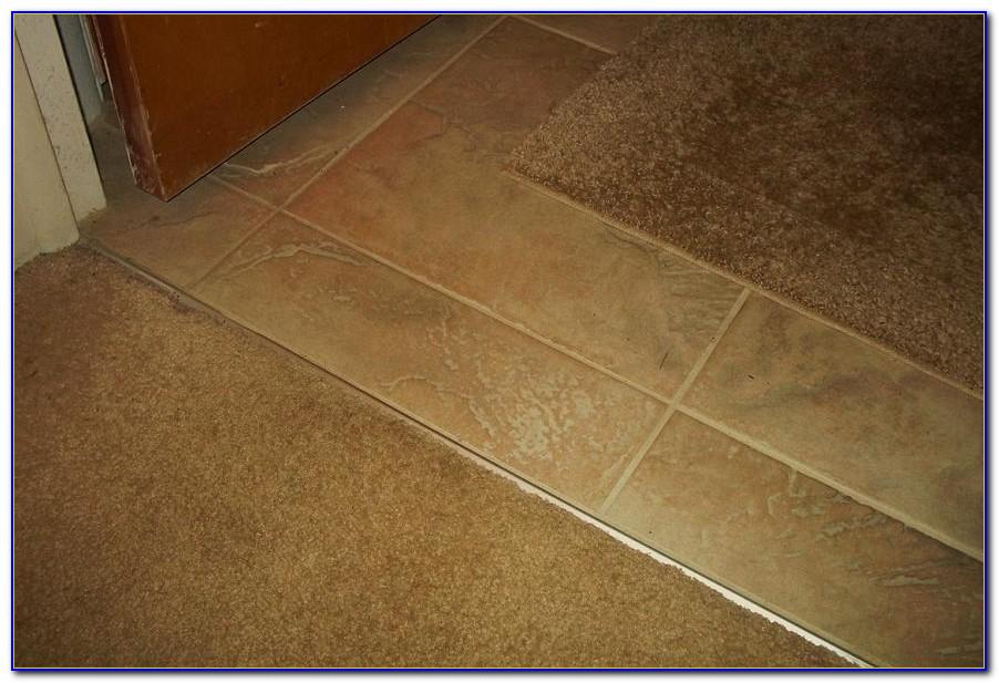 Berber Carpet Transition To Tile