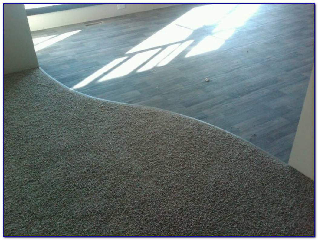 Carpet Transition To Vinyl Tile
