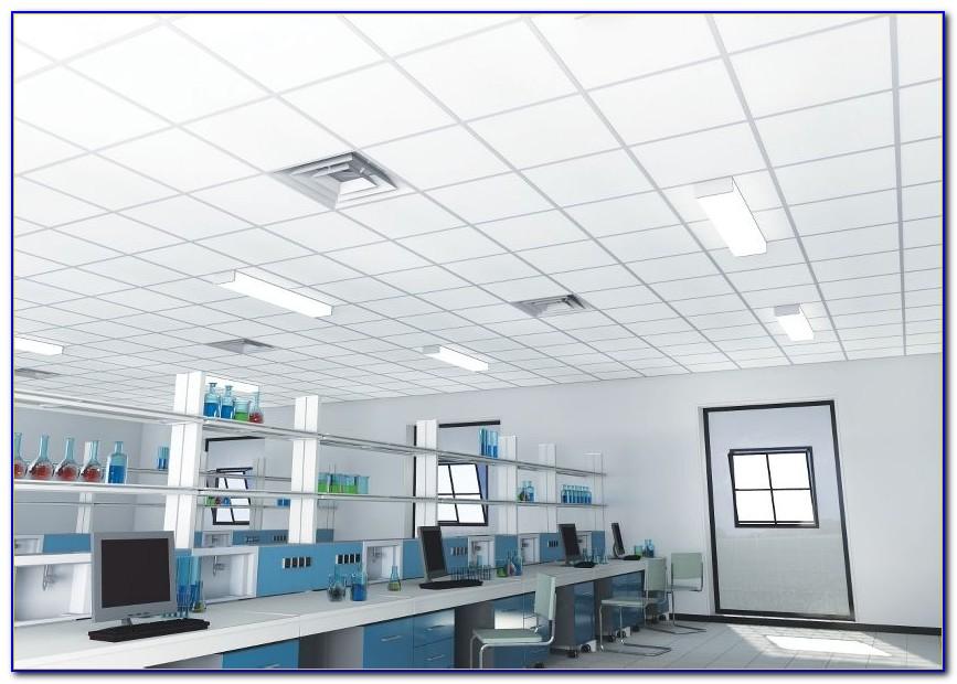 Clean Room Ceiling Tiles