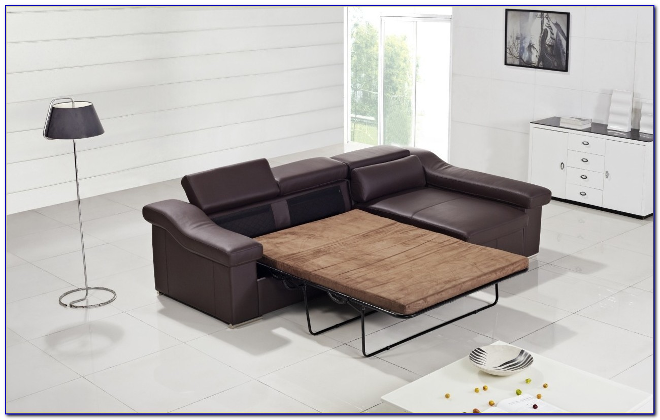 Modern Contemporary Sectional Sofa Bed
