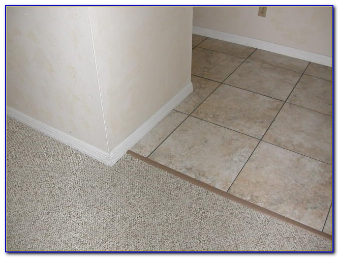 Tile To Carpet Transition Strip Installation