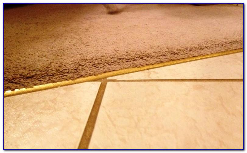 Wide Carpet To Tile Transition Strip