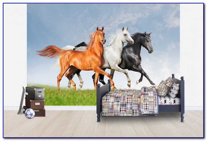 Horse Wallpaper For Walls Uk