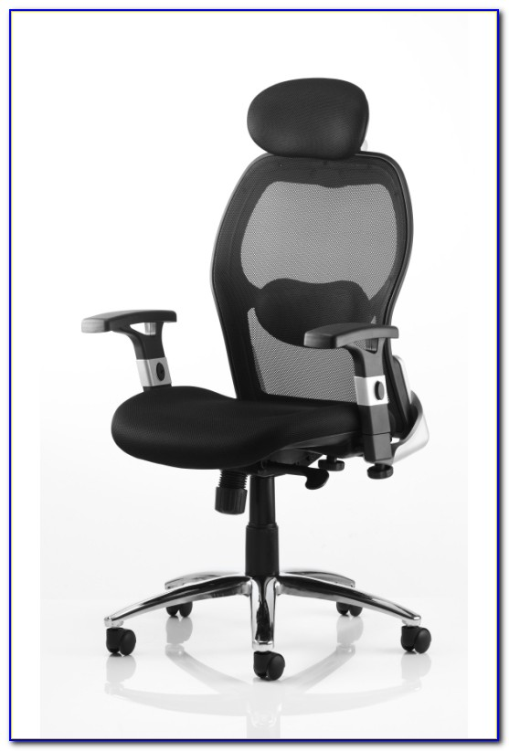 Office Chair Back Support Amazon