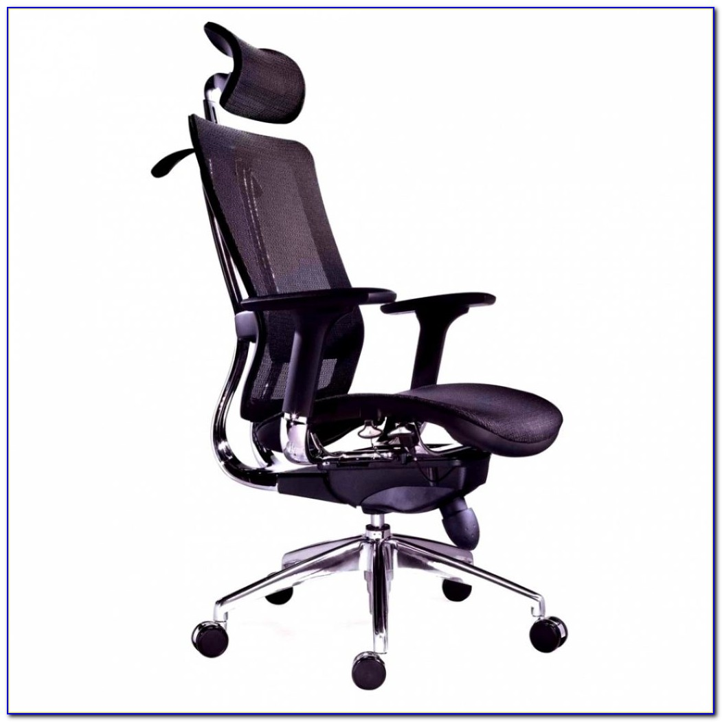 Ergonomic Office Chair For Back Pain
