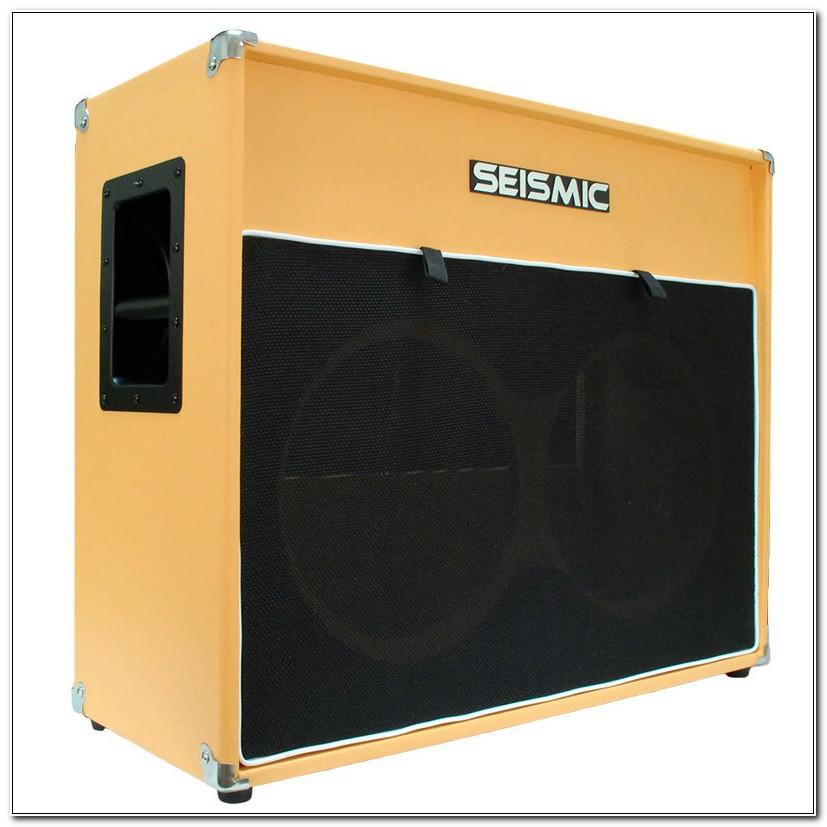 2x12 Empty Guitar Speaker Cabinet