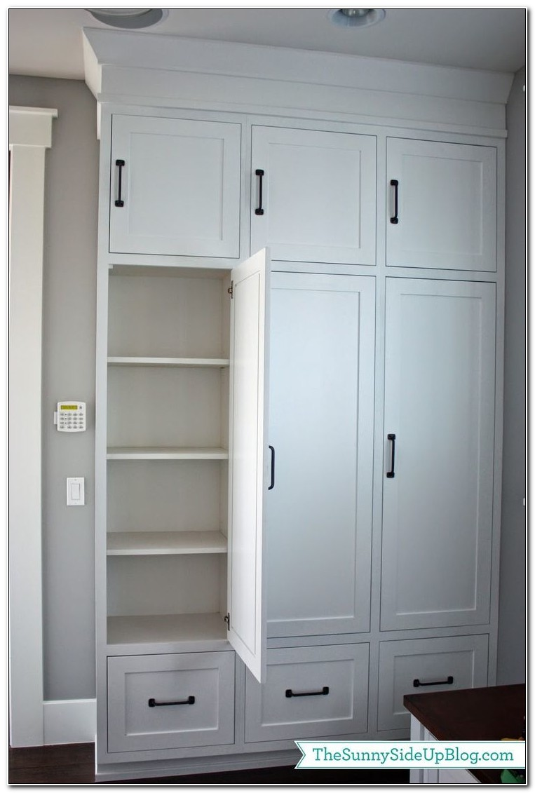 Built In Storage Cabinets With Doors