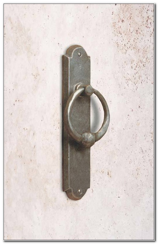 Cabinet Ring Pulls With Backplate