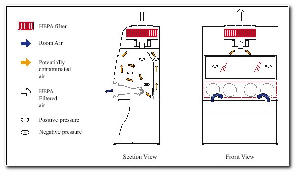 Class 1 Biological Safety Cabinet