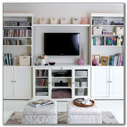 Living Room Storage Designs