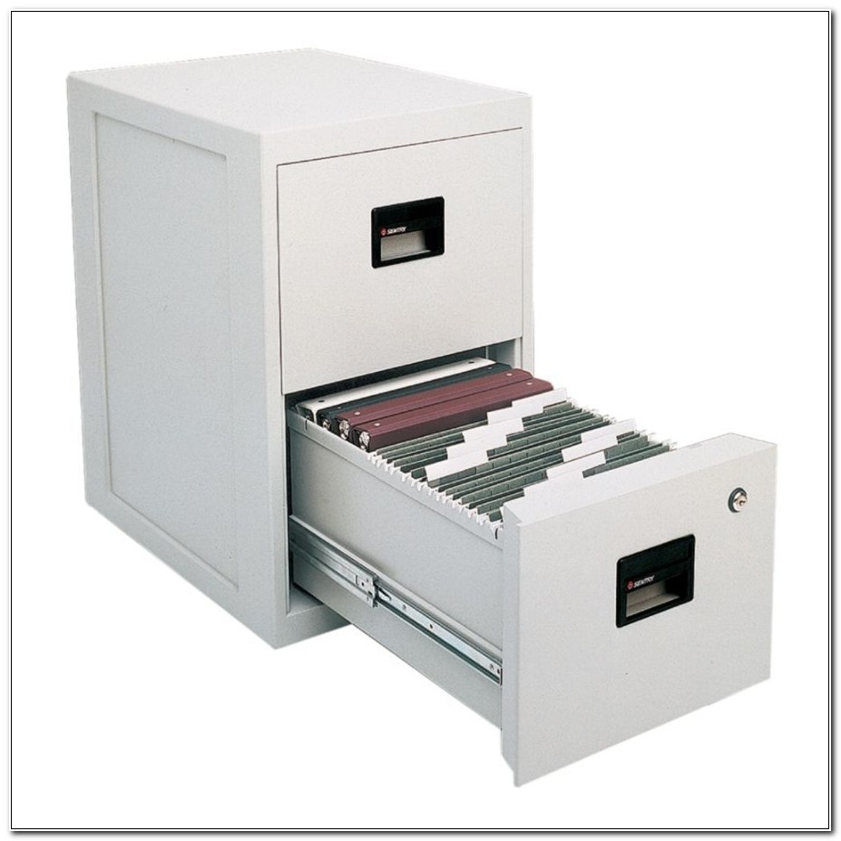 Sentrysafe 2 Drawer Fire Safe File Cabinet