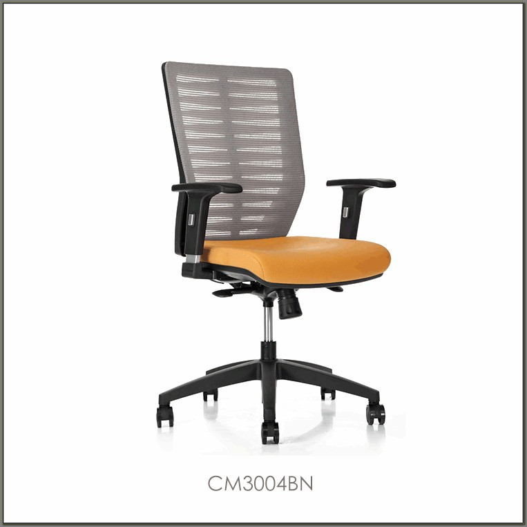 Herman Miller Office Desk Chair