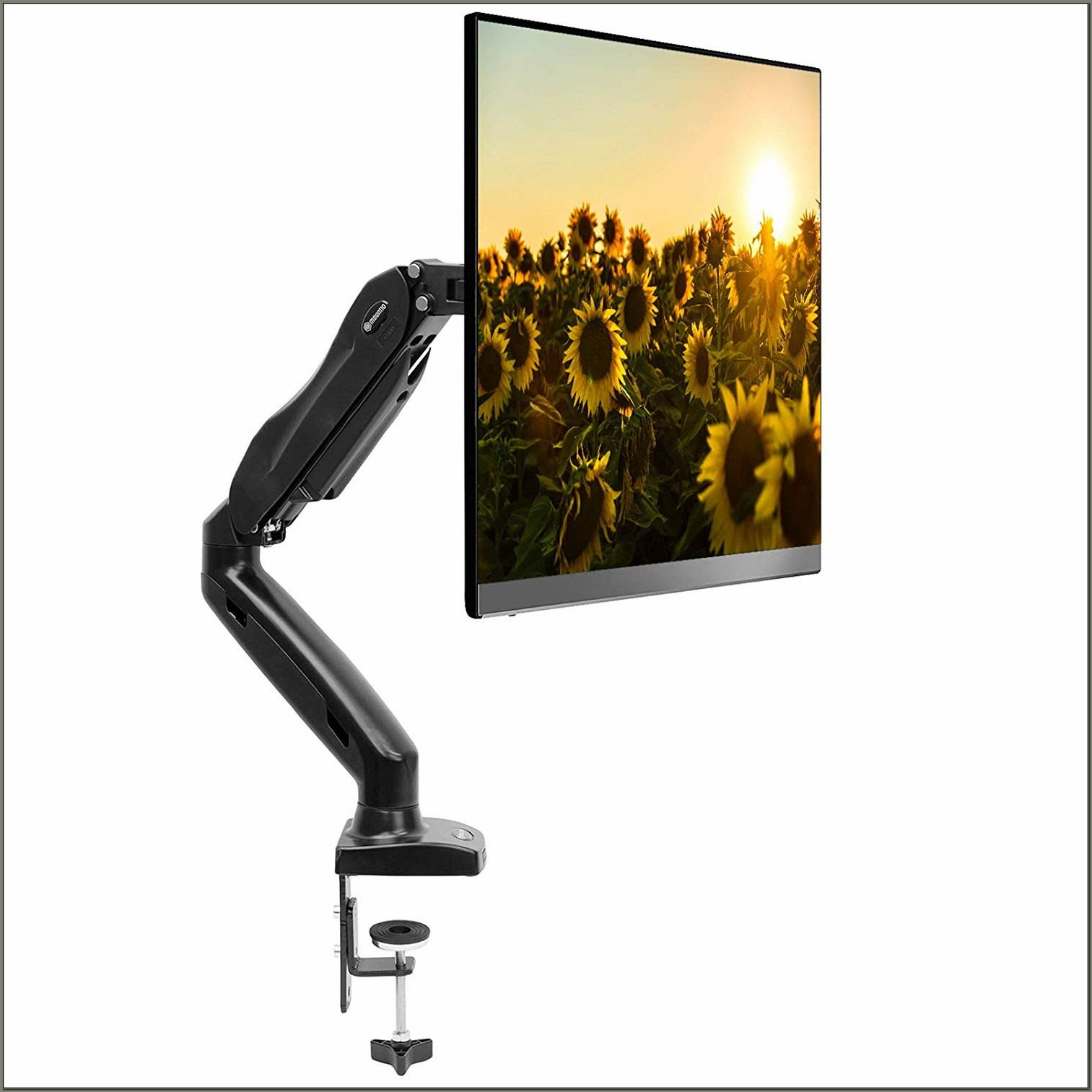 Monitor Arm Desk Mount