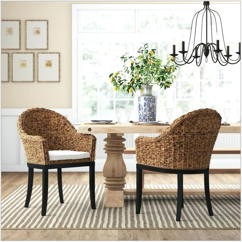 Birch Lane Dining Room Chairs