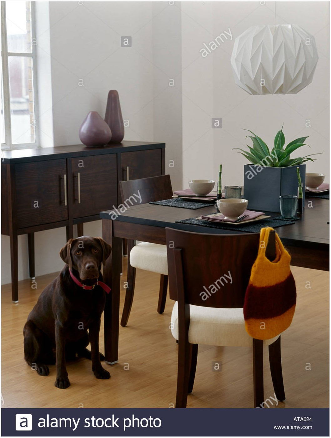 Dining Room With Dark Furniture