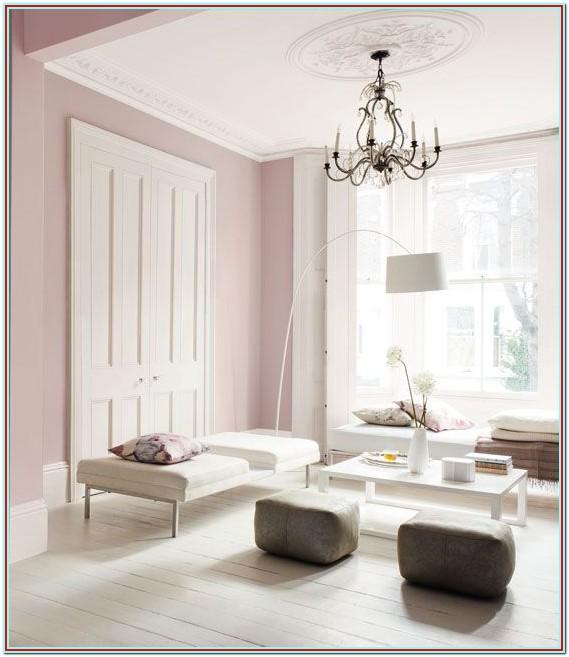 Blush Pink And Brown Living Room
