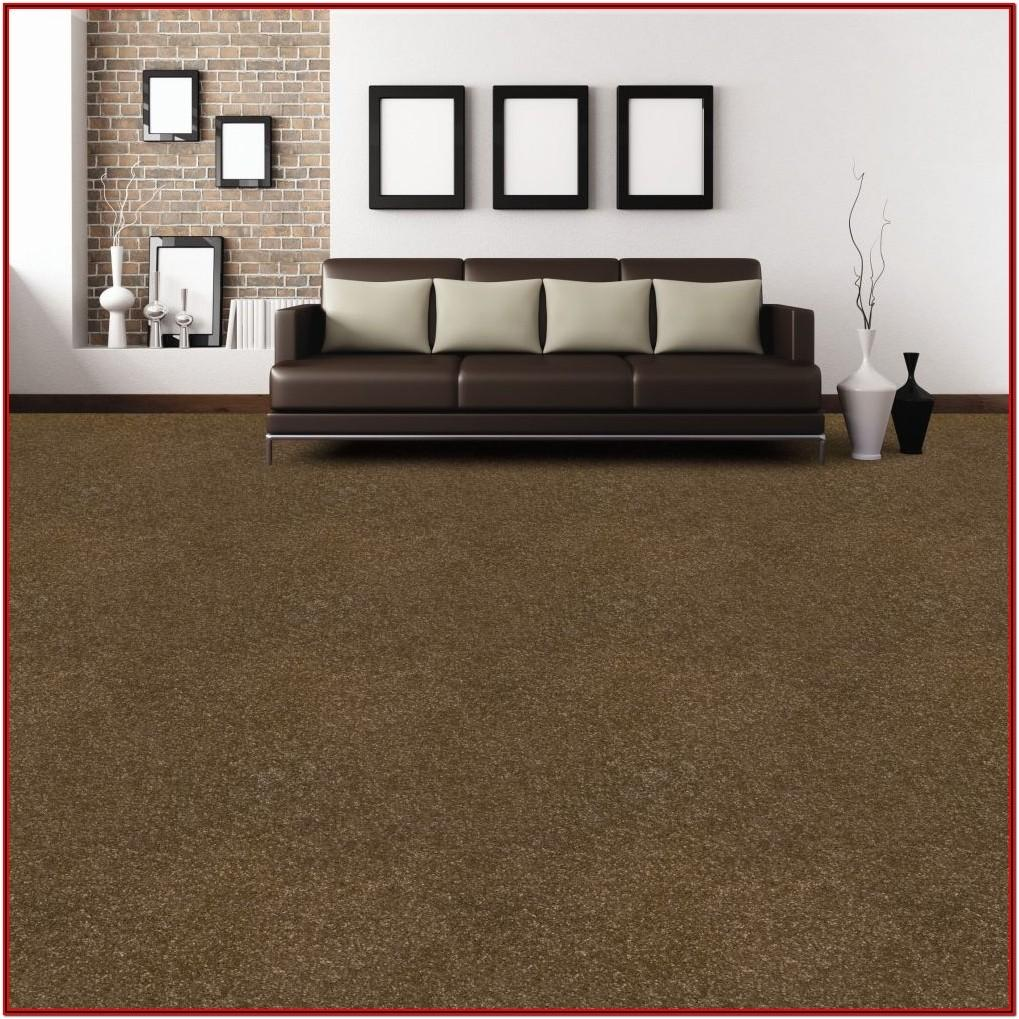 Brown Carpet Living Room Ideas