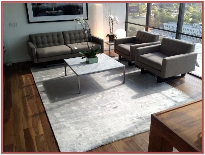 Contemporary Modern Living Room Rugs