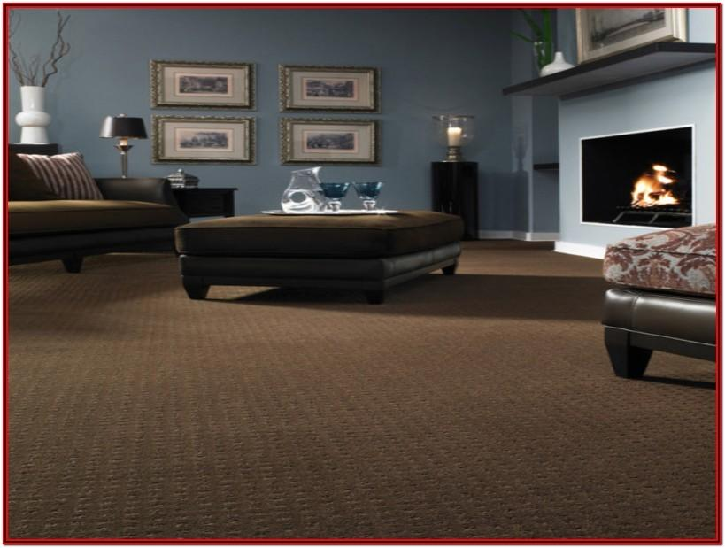 Dark Brown Carpet Living Room Ideas