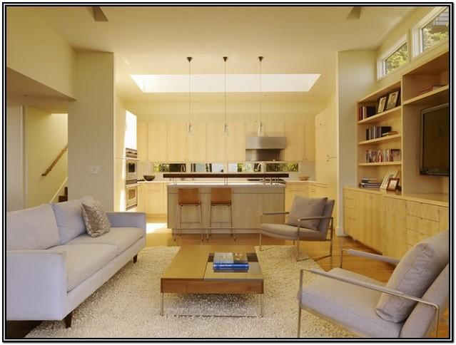 Kitchen And Living Room Combined Designs