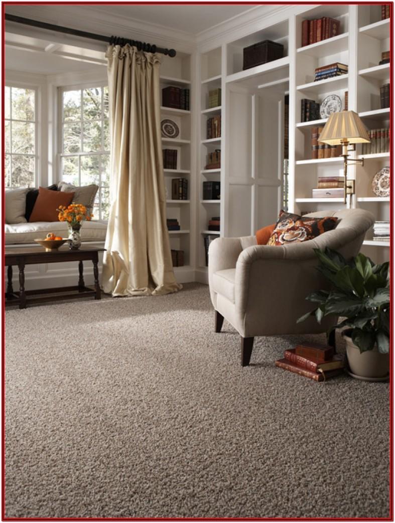 Light Brown Carpet Living Room Ideas